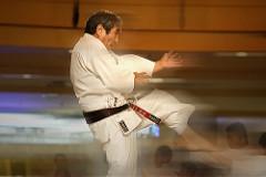 Saiko Shihan in full flight